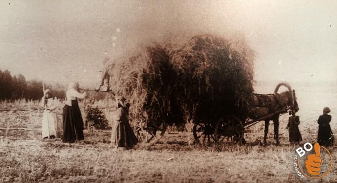 Крестьяне деревни Чурилково на уборке сена  1900 год